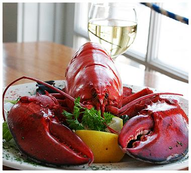 g_lobster2
