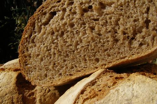 Breadmachine recipes buttermilk