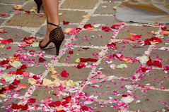 Bridesmaid high heels and rose petals (Alexandre Moreau | Photography) Tags: flowers red people woman white france get church fleur fashion rose horizontal stone closeup walking rouge leaving outdoors photography glamour shoes flickr shoot day highheels colours married dress adult emotion artistic pavement robe ceremony award womanonly ground petal celebration together talon amour sofrench bridesmaid heel weddings lovely mariage drama blanc onthemove licence oneperson weddingceremony gettyimages traditionalculture rosepetal checked frenchy partof ptales marie weddingshoes licenced adultonly unrecognisableperson focusonforeground frenchtradition lowsection oneshoesonly
