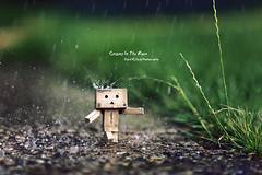 Singing In The Rain (Dkillock) Tags: david anime cute wet rain photoshop 35mm canon walking toy drops model amazon open mark walk wide mini artificial full special cardboard sprinkler ii frame 5d layers f2 usm splash fullframe edition stroll ef 135mm mkii markii strolling singingintherain cs3 danbo amazoncojp llens canonef135mmf2lusm revoltech killock danboard 5dmarkii 5d2 5dmkii dkillock davidkillockphotography