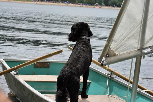 skippy on vacation 057