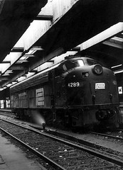 Train shed of Michigan Central Depot (mcsdetroitfriend) Tags: michigan detroit trains michigancentralstation penncentral 4289