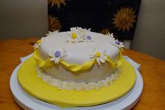 20100607-DSC_4670 (sunmoonstars711) Tags: cakes cake cakeclass fondantcake