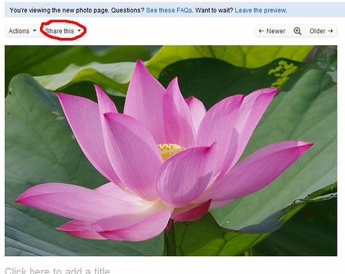 flickr新版面要外連圖~可以參考這邊~
