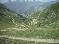 Alps Summer 2010