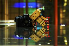 (just a way of life) Tags: bear brick dan photography singapore fierce bokeh board bo danbo brickbear danboard