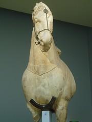 Horse from the Mausoleum (Aidan McRae Thomson) Tags: sculpture horse london statue ancient mausoleum classical britishmuseum antiquity artemisia halicarnassus mausolus caria sevenancientwonders