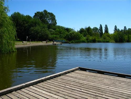 trout lake 002
