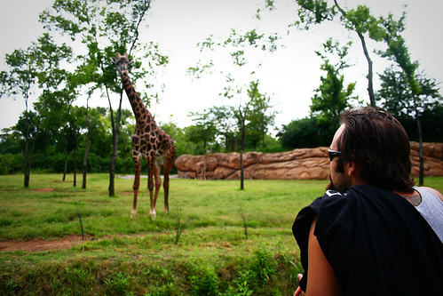 Always Talking to Giraffes