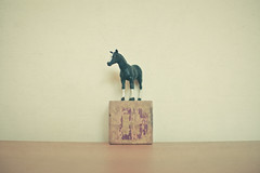 #21 (_cassia_) Tags: horse brown white black toy purple plastic woodenblock letterh hisforhorse 365dayproject followthehorse