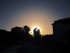 Hope (iFadey) Tags: pakistan sunset sun tree silhouette wire hassan islamabad fawad ifadey