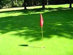 Green grass, red flag