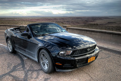 The ride (wili_hybrid) Tags: road summer arizona usa ford car america reflections landscape outdoors freedom nationalpark scenery unitedstates wheels july convertible roadtrip reflective vehicle mustang windshield fordmustang petrifiedforest blackcar
