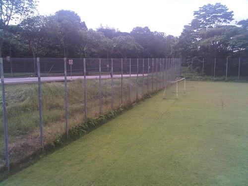 3m fence