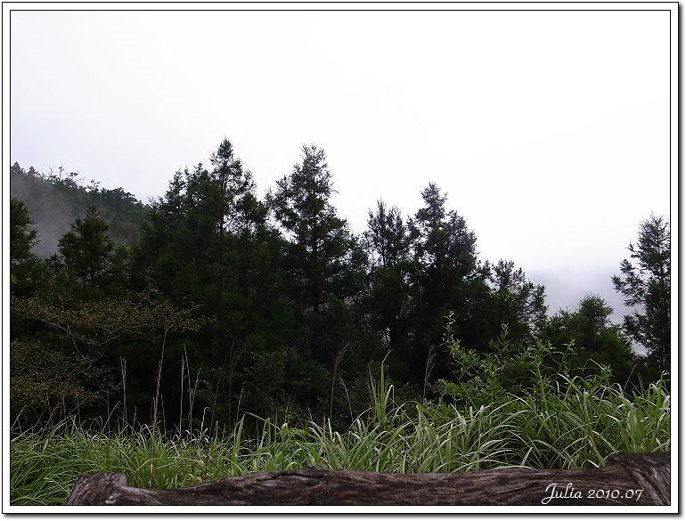 翠峰湖 (14)
