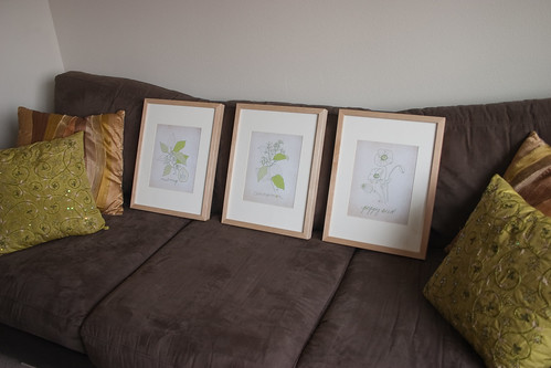 Herb print framing order