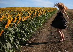 315/365 Happy Dance (sosij) Tags: england selfportrait morninglight sunflowers hitchin hairflip herts
