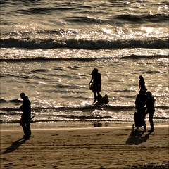 Silhouettes, doing their own things... (Peterbijkerk.eu Photography) Tags: sunset beach silhouette strand zonsondergang silhouettes noordzee schaduw zon egmond egmondaanzee peterbijkerkeu sunrelatedpictures
