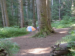 Campsites at lower campground.