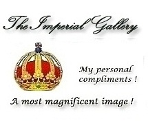 The Imperial Gallery