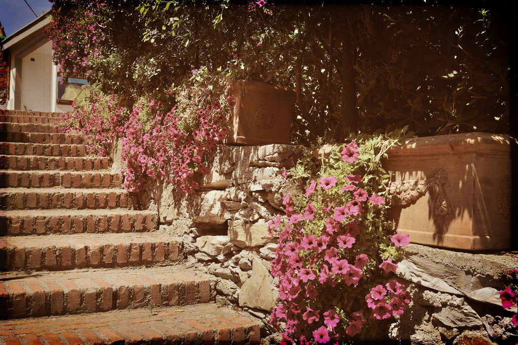 The Steps To Corniglia