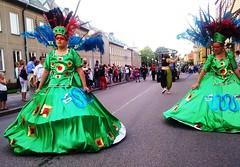 Scandinavian Carnival in MaRioStad Sweden #4