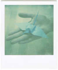 Origami crane (Zeus one) Tags: origamicrane firstflush colorshade zeusone px70 impossibleproject