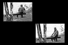1 - 12 aot 2010 Vitry-sur-Seine Bords de Seine Tiens une paparraza (melina1965) Tags: trees blackandwhite bw tree water collage bench nikon eau ledefrance noiretblanc mosaic collages mosaics august arbres benches arbre banc 2010 aot mosaque mosaques vitry valdemarne bancs vitrysurseine d80 photoscape 5picsaday 5bilderprotag