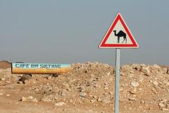Composition: the camels cross for coffee (10b travelling) Tags: africa road sahara coffee sign ctb trek cafe crossing desert post tunisia djerba roadtrip camel ten maghreb afrika desierto carsten huffington tunisie afrique brink tunesien douz matmata wueste 10b tunesie cmtb tenbrink photoused republiquetunisienne altunisiyya