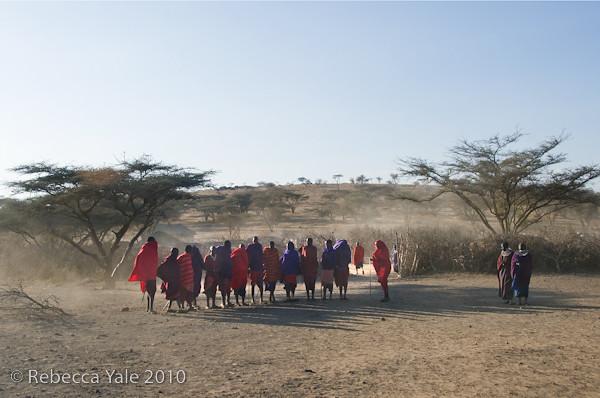 RYALE_Ngorongoro_Crater_160
