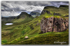 Skye Vista (Bill McKenzie / bmphoto) Tags: skye sheep 5d trotternish quiraing biodabuidhe beinnedra