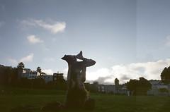 lurk (Terry Barentsen) Tags: sf sanfrancisco california ca west color film cali 35mm canon photography bay photo fuji photographer bayarea a1 northern fd planetearth 400h terryb wwwterrybarentsencom terrybarentsen