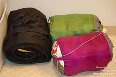 20100813-Home again, home again