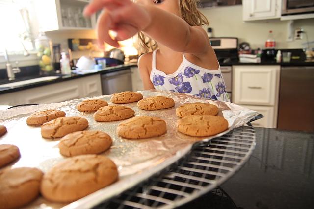 paigercookies