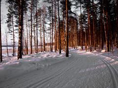 xc sky en Lappeenranta (Remasterizadas) (El BauL de PeiBoL) Tags: sky finland paisaje olympus finlandia lightroom denoche saimaa xcsky lappeenrata