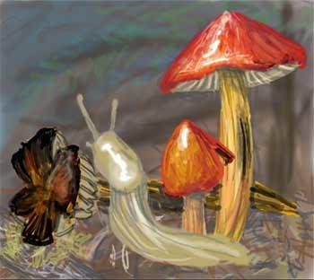 w_2010-08-26_slug1
