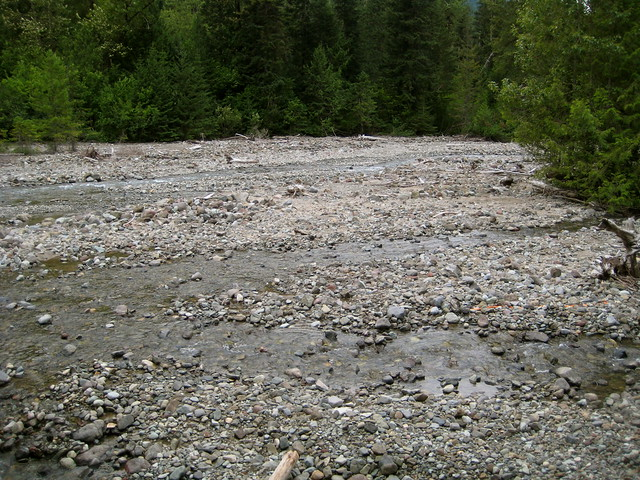 Gravel Bar and Meandering Creek