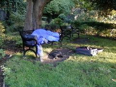 Homeless Rough Sleeper