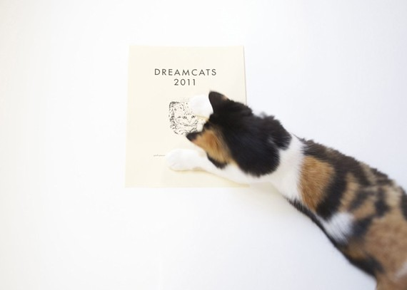 http://www.etsy.com/listing/62178829/dreamcats-2011-calendar