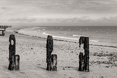 Sentinels (D1g1tal Eye) Tags: sea coast beach groyne bw monochrome blackandwhite nikon d7000 50mm f18d