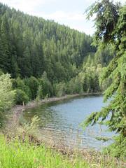 Bay or cove? (trilliumgirl) Tags: kootenay lake bc british columbia canada trees green bay