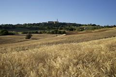 Pienza III (picturesfrommars) Tags: a7 fe tuscany toskana italy sel1635z pienza