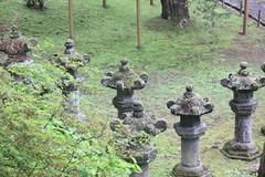 IMG_2617 (normafincher) Tags: japan nikko nikkonationalpark