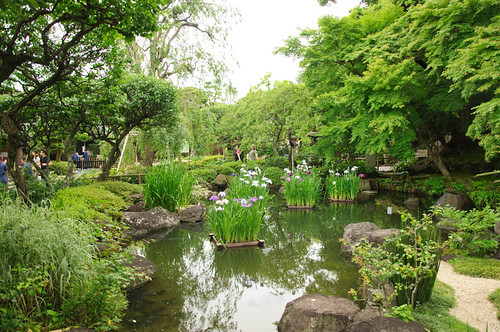 Pond at Hasedera
