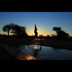 Kalahari Yoga Sunset  explored (NamWizard) Tags: wood blue trees sunset sky woman sun reflection water pool beauty yoga canon desert lodge explore zen zebra kalahari aura namaste nickolbe