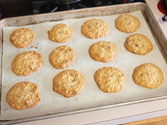 Golden Syrup Oatmeal Chip Cookies