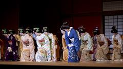 17th Miyako no Nigiwai #20 (Onihide) Tags: japan kyoto pontocho miyagawacho kamishichiken gionkobu kagai gionhigashi miyakononigiwai