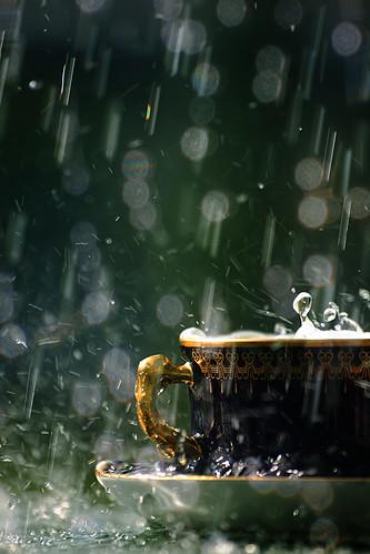 フリー写真素材, 物・モノ, 食器, コップ・カップ・グラス, 雨,