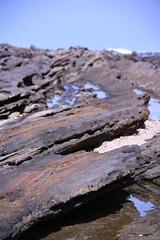 20100620-IMG_5270 (trugiaz) Tags: beach java rocks waves padi jawa pantai karang ombak tanam sawarna panen