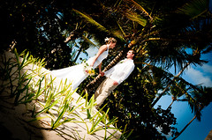 Caribbean Emotions Photography and Cinema Wedding Punta Cana Dominican Republic (caribbeanemotions) Tags: wedding mexico photographer photos jamaica punta caribbean cana videography weddingphotography domenicanrepublic weddingmovies dominicanpuntacanawedding weddingphotographypuntacana caribbeanemotions puntacanaprincesshotel caribbeanemotionsmovies